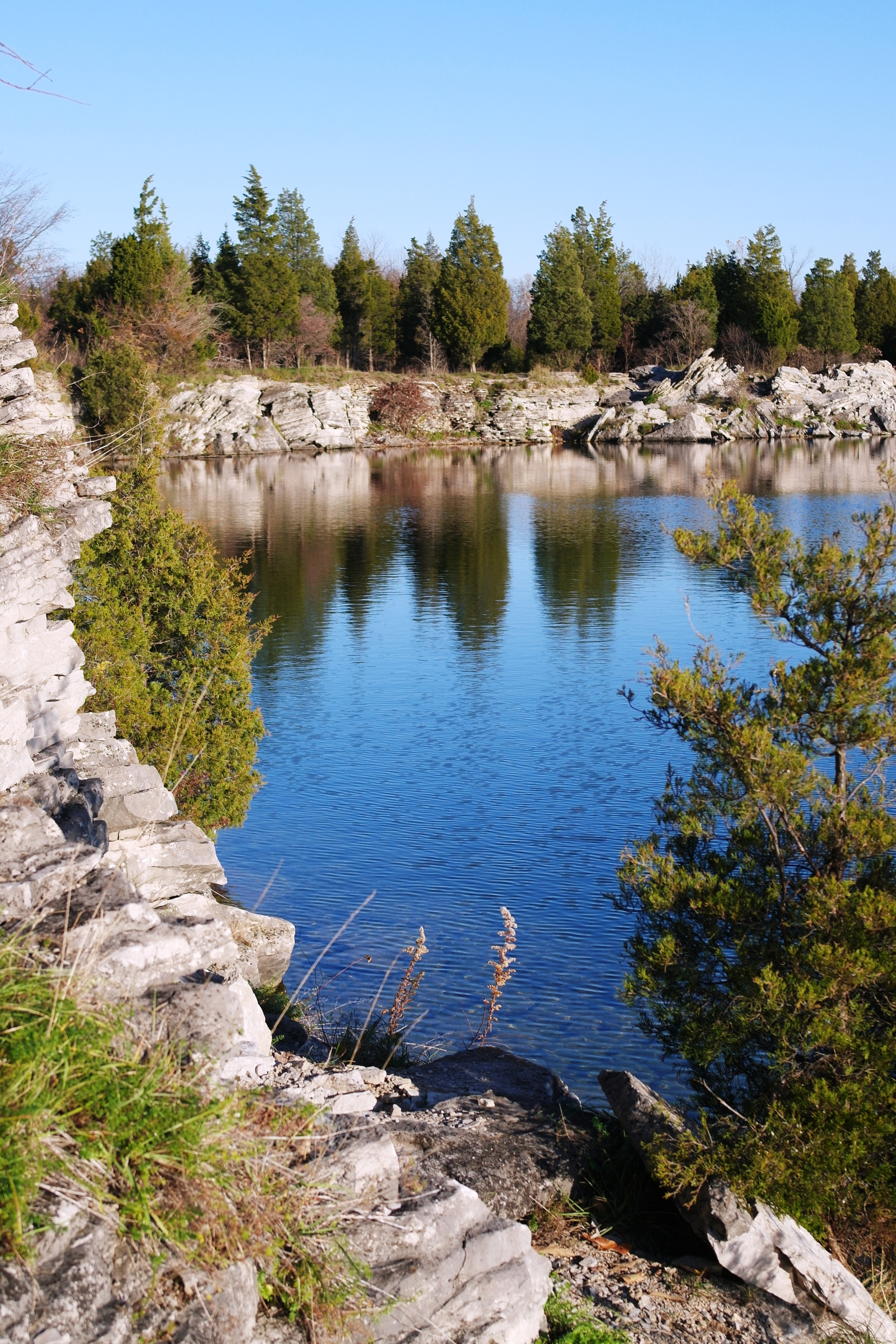 Raised Wildlife Pond